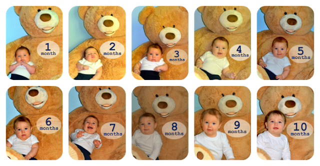 A collage of baby pictures taken over 10 months
