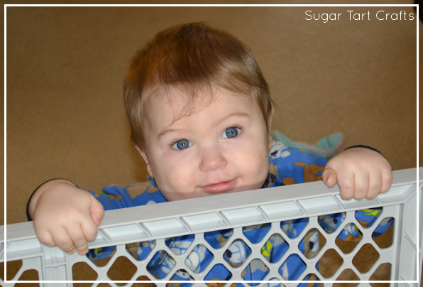Baby standing at a baby gate