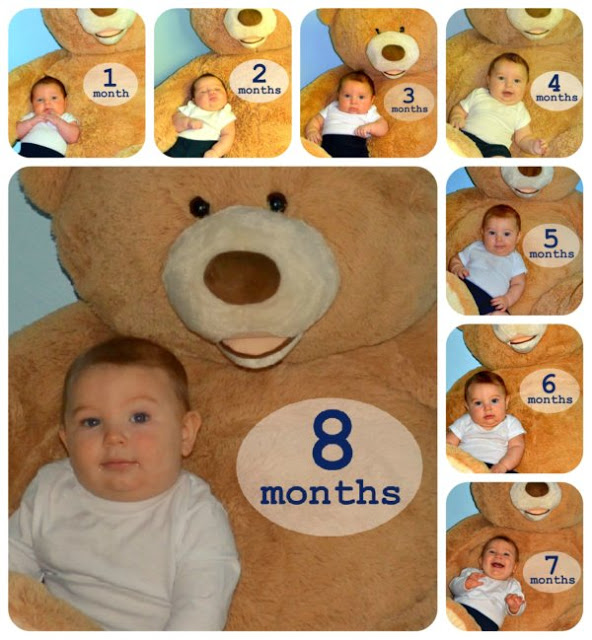 Collage of 8 months of baby pictures