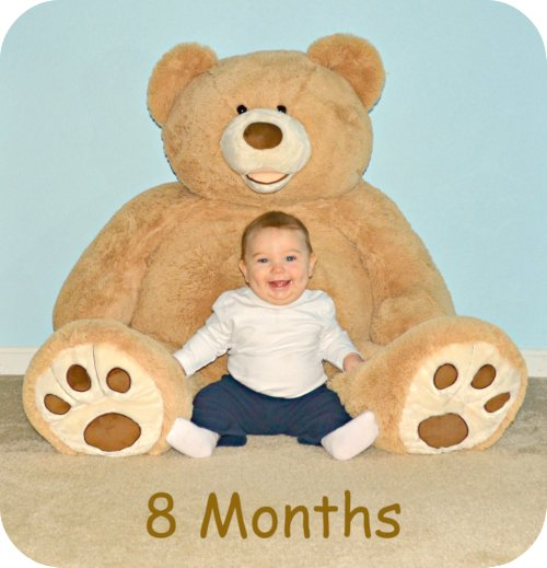 8 month old baby with teddy bear