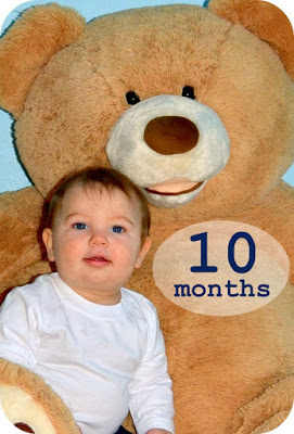 close-up of a 10 month old baby boy sitting with a giant teddy bear