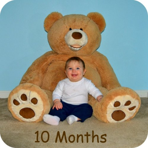 10 month old baby boy with a giant teddy bear