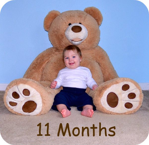 11 month picture of a baby boy with a giant teddy bear.