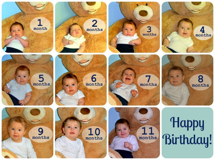 Collage of baby pictures ages 1 to 11 months.