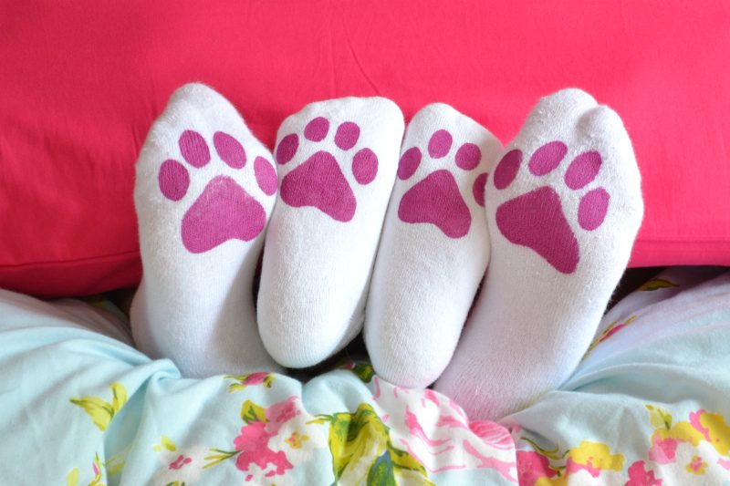 DIY Kitten paw print socks